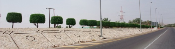 Jebel-Hafit-road
