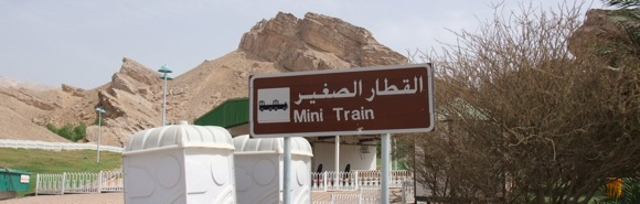 mini-train