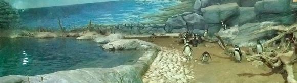Al-Ain-Wildlife-Park-16