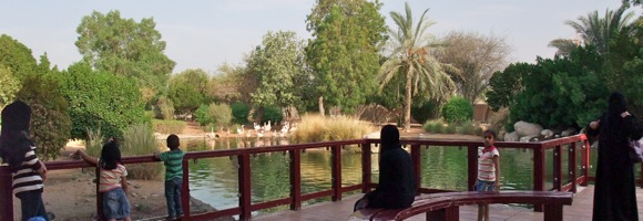 Al-Ain-Wildlife-Resort-3