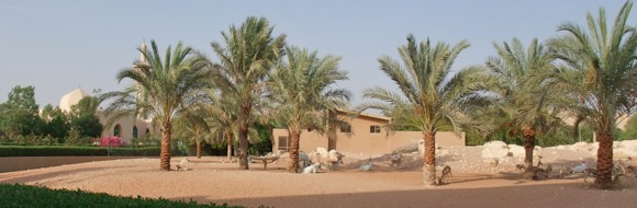 Al-Ain-Wildlife-Resort-5