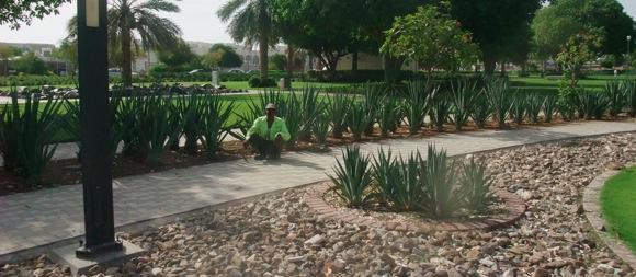 Jahli-Park-Al-Ain-18