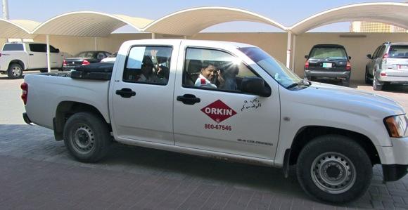 Orkin-pest-control-Al-Ain